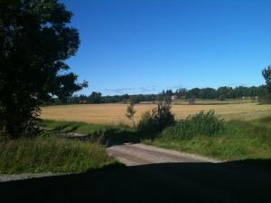 Att bo på landsbygden (2)