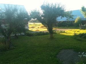 Riktigt fin sommarkväll